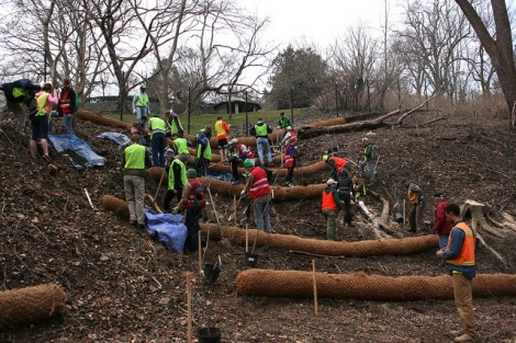 Volunteers installing biodegradable triage logs designed to decrease erosion and increase groundwater supply. Spring 2014.